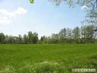 krajobraz_012