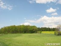 krajobraz_015