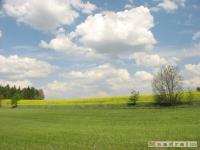 krajobraz_017