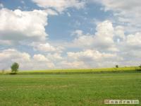 krajobraz_019