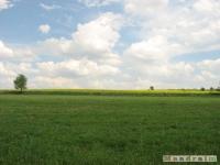 krajobraz_020