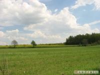 krajobraz_022