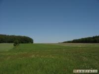 krajobraz_025