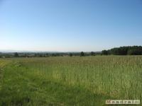 krajobraz_027