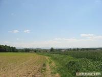 krajobraz_028