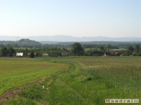 krajobraz_029