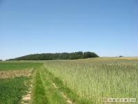 krajobraz_032