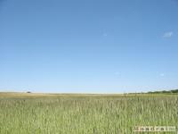 krajobraz_033