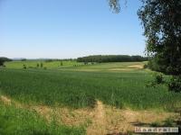 krajobraz_035
