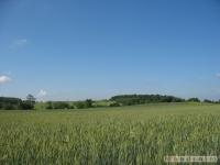 krajobraz_036
