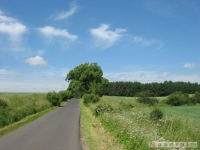 krajobraz_041