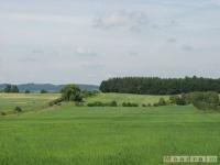 krajobraz_044