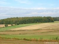 krajobraz_052