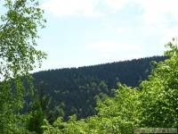krajobraz_061