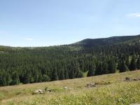 krajobraz_069