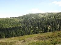 krajobraz_077