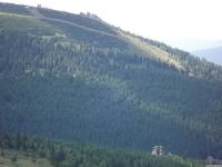krajobraz_083