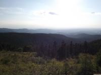 krajobraz_118