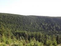 krajobraz_121