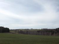 krajobraz_167