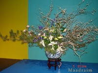 kwiat_022