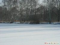 lodsnieg_117