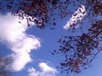 niebo_221