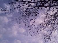 niebo_231