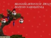 kartka_sbz025