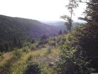 krajobraz_122