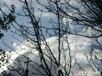 niebo_062