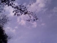 niebo_230