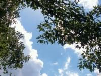 niebo_273